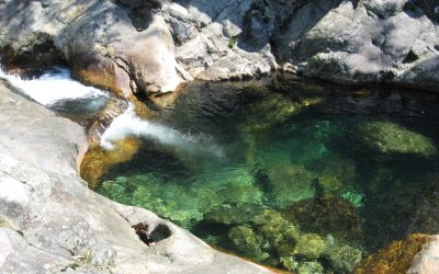 Best natural pools